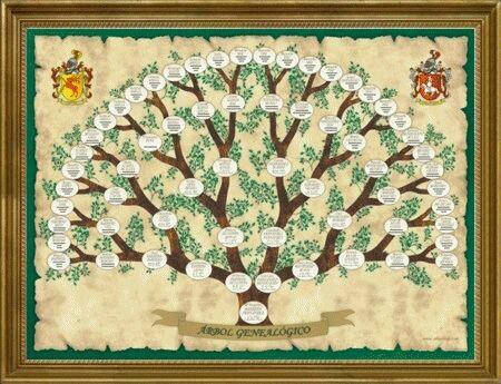 Oración Para Sanar Tu árbol Genealógico Compartiendo Luz Con Sol